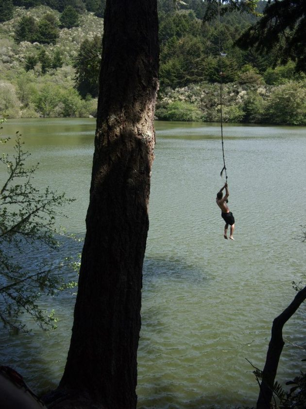 Stosh Rope Swing